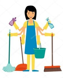Cynthia the Cleaner - Eastbourne area only