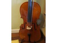 3/4 Andante cello