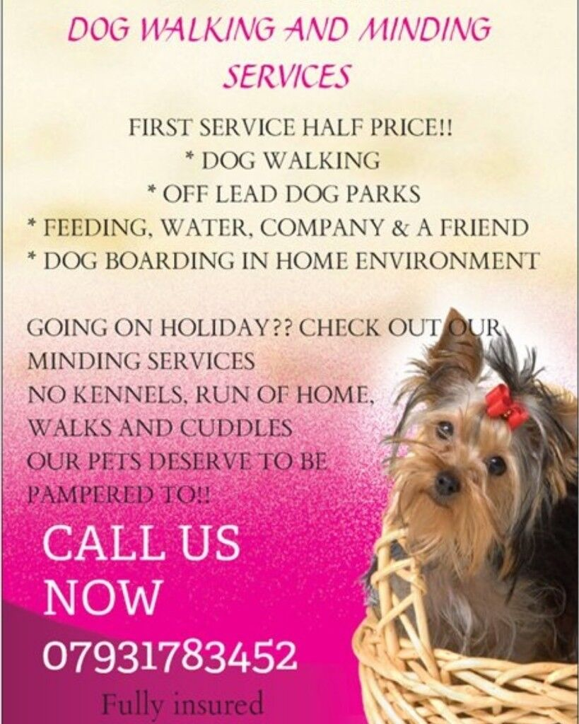 Pooch S Dog Walking And Home Boarding Services In Little Hulton