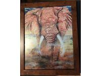 Bull Elephant Charge - Framed print in a 16 x 13 inch frame