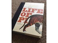 Yann Martel - Life of Pi - Collectable