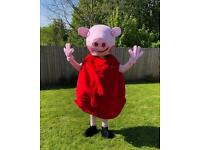 Peppa Pig Costume Gumtree