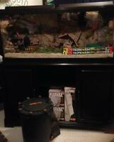 Fish Tank, FX5 Filter, Stand and accessories