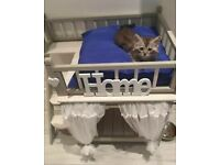 Rabbit / Dog / Cat indoor luxury house hutch bunk beds in white wash and grey
