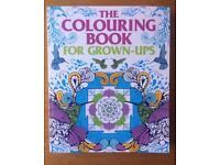 Brand New Unused A4 Colouring Book & 12 Pencils