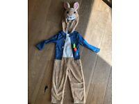 Peter rabbit costume 3-4 years