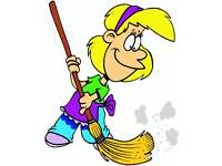 Domestic cleaner £12ph