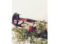 Looking for a busking partner - Violinist, Guitarist, Cellist, etc...