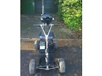 Powaglide single seat golf buggy electric golf cart working Inc charger