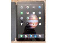 "iPad Pro 12.9"""