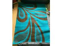 Gorgeous teal and brown large rug
