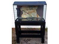 FLUVAL 80CM FISH TANK / AQUARIUM ON BLACK STAND