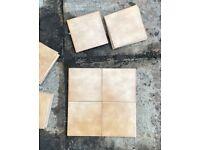 Free Ceramic Wall Tiles 15 x 15 cm.