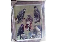 Gyr falcons falconry picture by D M Henry, new, bronze effect frame, Swaffham area
