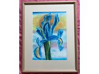 Very large, heavy, good quality, framed, glazed and mounted Iris Flower Pastel/Watercolour