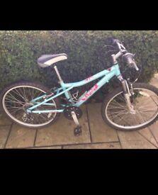 Dawes Bandit juniour bike. 14 inch