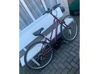 Apollo CX10 ladies hybrid bike all works ride away bargain at £70