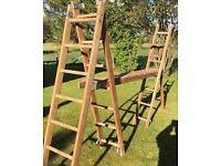 Vintage Ladder set