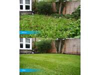 CHEAP GARDEN CLEAN AND MAINTAINED/ friendly handyman service
