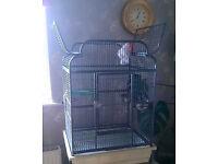 Opening top Parrot bird cage