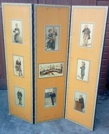 Vintage screen-the wooden panels are printed with medical themed prints-with 72x22 inch panels