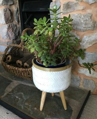 Boho Style White Bamboo Basket Planter Flower Plant Pot Plants Herb Container -