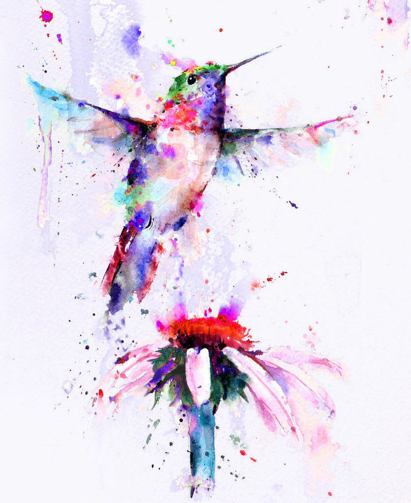 Beautiful Humming Bird CANVAS WALL ART SINGLE Picture Print