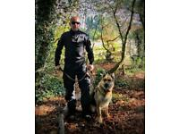 24/h Professional Security Dog Handler Available