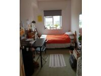 Single Room for Rent - House share - Cliftonwood - £350pm