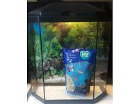 FOR SALE GLASS FISH TANK/AQUARIUM 25L 6 SIDED SHAPE - ONLY £10