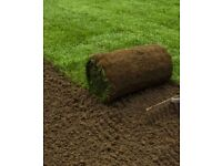 Good Quality Garden Turf