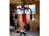 Delta fit multi gym weights machine.