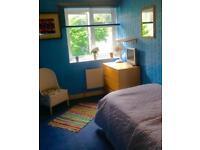 Spacious cosy single room