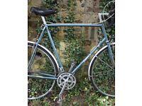 Reynolds 531 Dawes Galaxy Racer (size Large) (retro/classic/road bike like Raleigh/Trek/Peugeot)