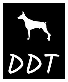Top quality Dog Trainer