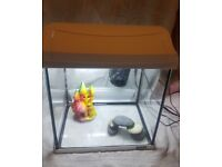 Tetra Fish Tank With Light And Accessories
