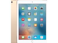 "iPad 9.7"" WiFi Gold"