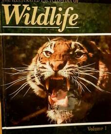 Wildlife Encyclopaedia