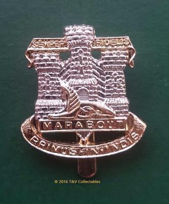 THE DEVONSHIRE & DORSET REGIMENT CAP BADGE (F&S)