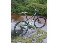 Mountain bike voodoo bantu