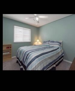 Room and Basement Available For Rent