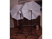 Two Fixed Lights with Stands and Brollies for Photo / Video