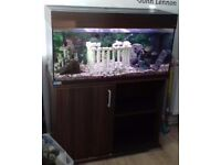 250l fishtank & stand *remote control led light changer* £250 ono 3ft