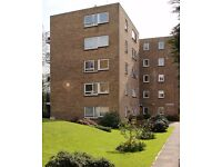 Large, beautiful, unfurnished, three bedroom flat with garage in South Woodford E18