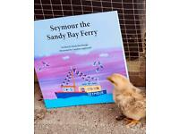 "Sell ""Tales of Walcombe Bay"" children's books. £3 per sale profit."