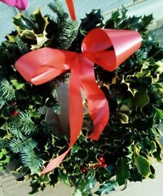 Real holly wreaths