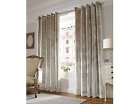 NEW -2 pairs Lux Eyelet Curtains aprox. 82 wide x 137cm drop Champagne HIGH QUALITY HEAVY VELVET
