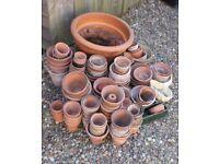 Lot of Approx 60 Terracotta Plant Pots Planters