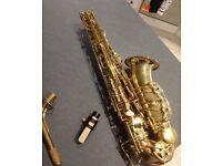 Selmer La Vie AS250 Alto Saxophone Brand New RRP £1400