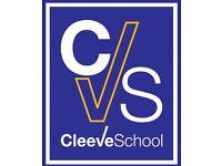 Cleeve School clip on tie Years 7-10